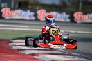 WSK Super Master Series 1st race Adria_12