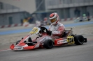 WSK Super Master Series 1st race Adria_16